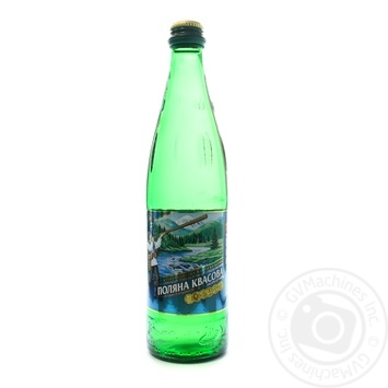 Medical-table mineral water Polyana Kvasova 0,5l - buy, prices for Novus - image 1