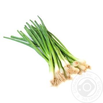 Овощи лук зеленый свежая Украина