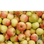 Fruit apple fresh
