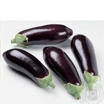 Vegetables eggplant fresh Ukraine