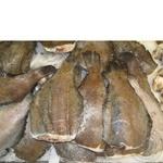 Fish flounder frozen