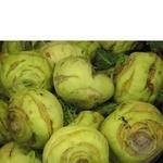 Овочі капуста кольрабі свіжа