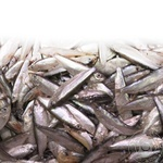 Fish sprat Amstor light-salted