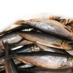 Fish herring Amstor sun dried