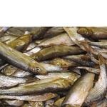 Рыба килька Амстор холодного копчения