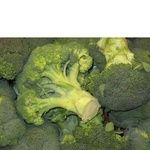 Овощи капуста брокколи свежая
