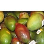 Фрукт манго свіжа