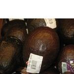 Фрукт авокадо свіжа