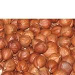Nuts hazelnut Faeton