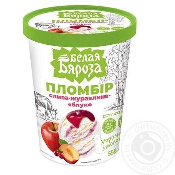 Ice-cream Belaya byaroza with plums glace plombieres 555g Ukraine - buy, prices for CityMarket - photo 1