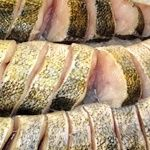 Steak pike perch pike-perch fresh