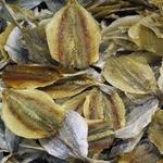 Рыба желтый полосатик сушеная