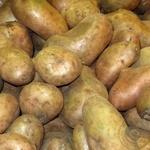 Овощи картофель свежая