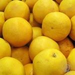 Фрукт цитрус грейпфрут свіжа