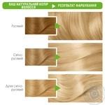 Фарба для волосся Garnier Color Naturals 10 Біле сонце - купити, ціни на Novus - фото 2