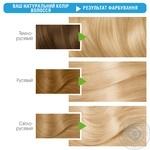 Краска д/волос Garnier Color Naturals 113Пес.бл шт - купить, цены на Ашан - фото 2