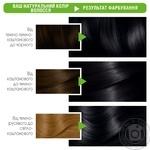 Garnier Color Naturals Creme №1+ Black Hair Color - buy, prices for Novus - image 2