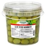 Cinquina Mamuth in Brine Olives 1kg