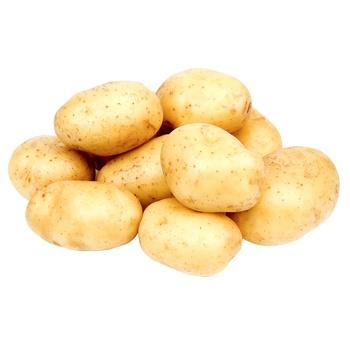 Картофель молодой - купить, цены на Метро - фото 1