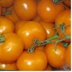 Овощи помидор оранжевый свежая Украина