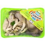 Ukrayinsʹki pecherytsi Gliva Mushrooms 500g