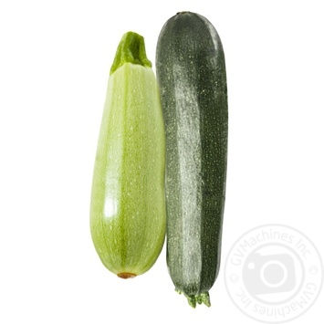 Zucchini + Squash