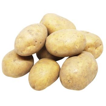 Картофель - купить, цены на Метро - фото 1