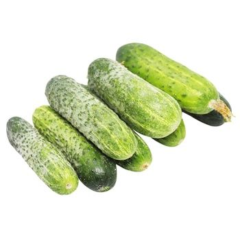 Cucumber, kg - buy, prices for Metro - photo 1