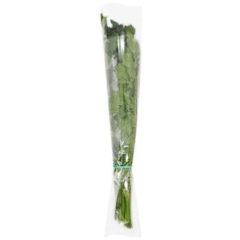 Greens parsley fresh 100g