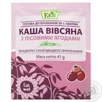Eco Oatmeal Porridge with Berries 41g