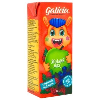 Сок Галиция ягодный с мякотью 0,2л