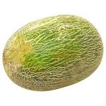 Melon Piele de Sapo