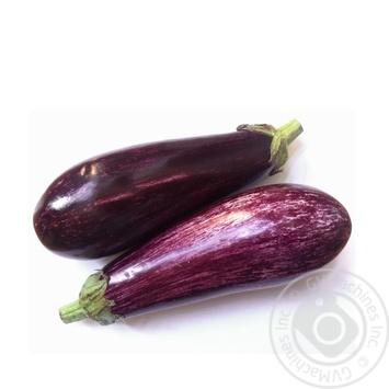 Vegetables eggplant fresh Spain