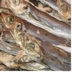 Fish blue whiting sun dried Ukraine