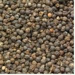 Spices black pepper black pea