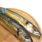Fish atlantic mackerel with the head