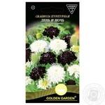 Насіння Golden Garden Квіти Скабіоза пурпур.День і ніч 0,3г