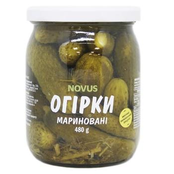Огірки Novus мариновані пастеризовані 480г - купити, ціни на Novus - фото 1