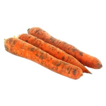 Морква - купити, ціни на Novus - фото 1