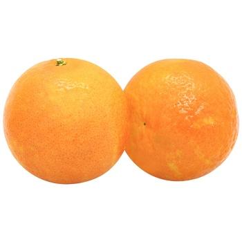 Mandarin Egypt kg