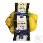 Metro chef fresh lemon 500g