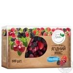 Blend berry Spela Berry mix frozen 300g