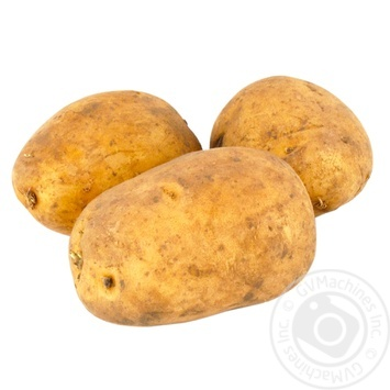 Potato - buy, prices for Furshet - image 1