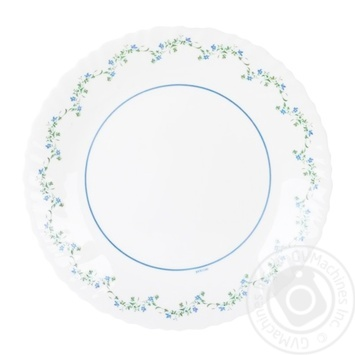 Тарілка Arcopal обідня Valia 25см - купити, ціни на Фуршет - фото 1