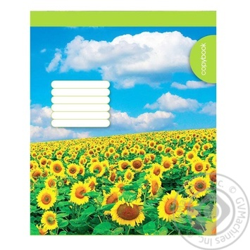 Notebook 48pages - buy, prices for Furshet - image 1