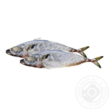 Mackerel Fresh-frozen 400-600+
