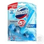 Блок туалетний Domestos Power Свіжість океану 53г
