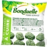 Bonduelle frozen in leaves spinach 2500g