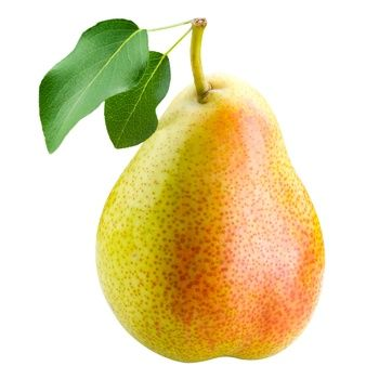 Williams pear - buy, prices for Novus - image 1