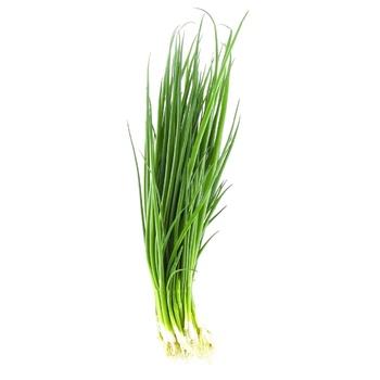 Лук зеленый свежий 100г - купить, цены на Novus - фото 1